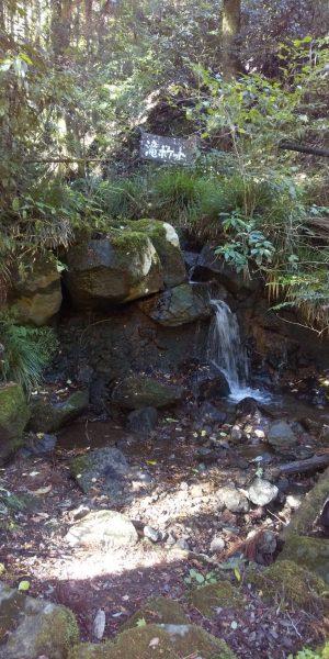丸太の森 滝ポケット