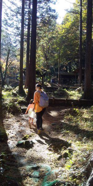 丸太の森 キャンプ場