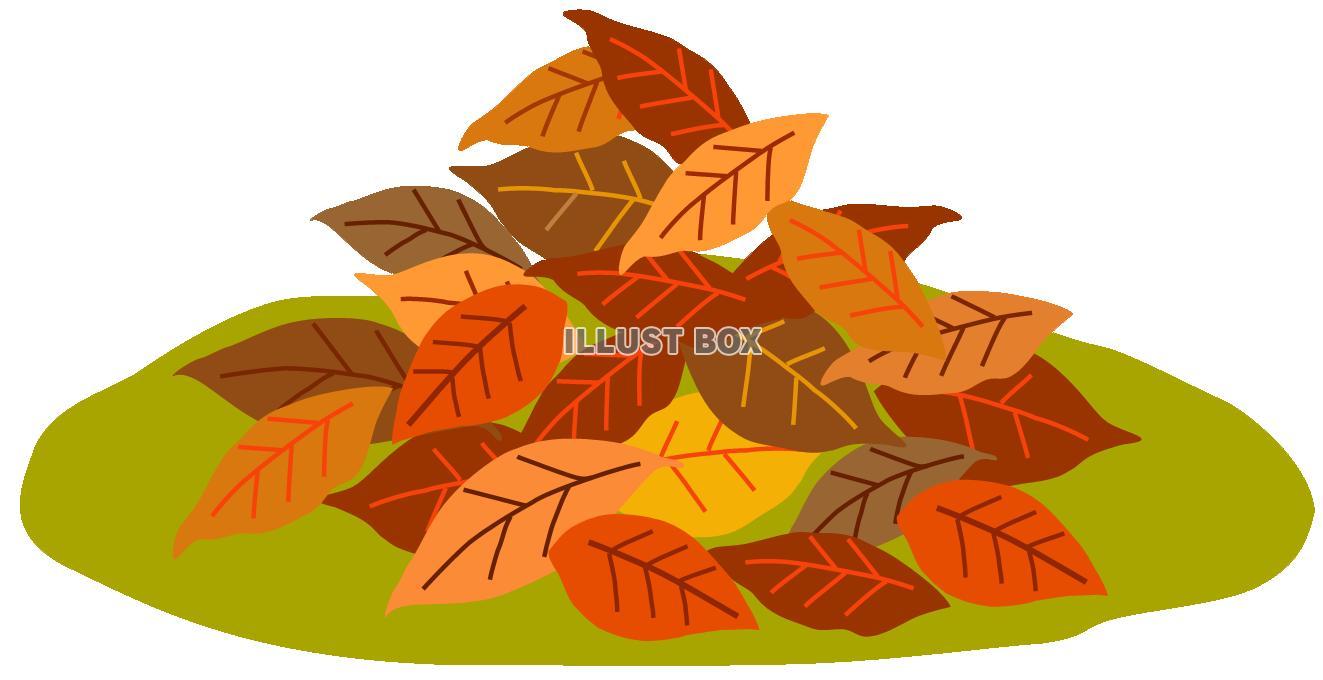 袋いっぱいの落ち葉を手に入れた。
